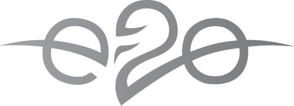e20 Logo